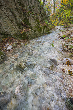 np: Small river in the woods in Autumn, Monte Cucco NP, Appennines, Umbria, Italy Stock Photo