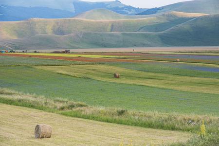 sibillini: Colored fields with bales in Piano Grande, Monti Sibillini NP, Umbria, Italy