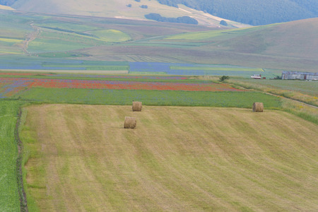 np: Colored fields with bales in Piano Grande, Monti Sibillini NP, Umbria, Italy