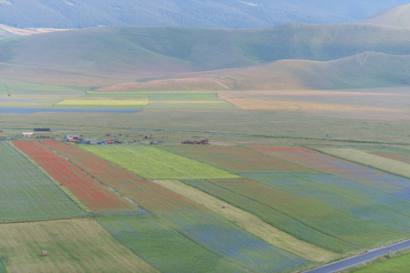 monti: Colored fields in Piano Grande, Monti Sibillini NP, Umbria, Italy