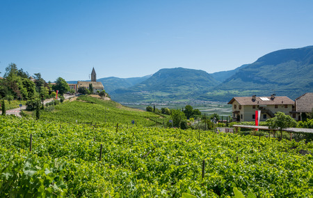 the Church of the idyllic village of Cortaccia. Cortaccia extends on the sunny side of the wine road. South Tyrol, northern Italy. Stock Photo