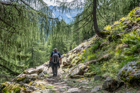 scenary: Hikers walk along a path a mountain trail. Rabbi Valley, Trentino Alto Adige, Italy