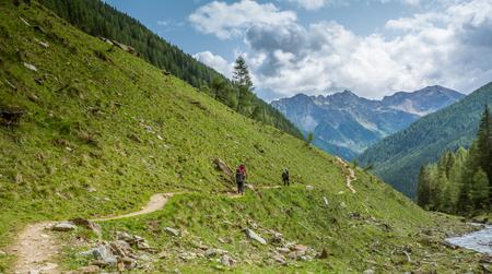mountain road landscape. Rabbi valley, Trentino Alto Adige, northern italy