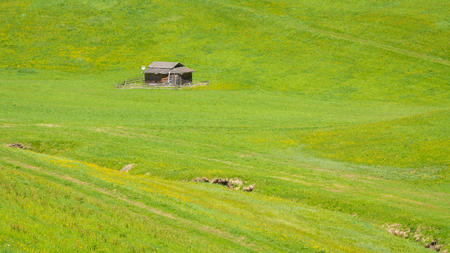 Small barn in the green meadow of the mountains of Trentino Alto Adige, South Tyrol, northern Italy