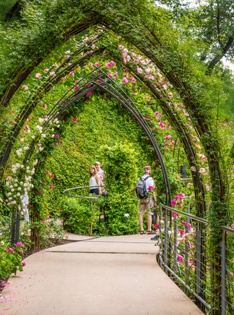 The Gardens of Trauttmansdorff Castle, Meran (Merano),South tyrol, Italy,offer many attractions with botanical species and varieties of plants.