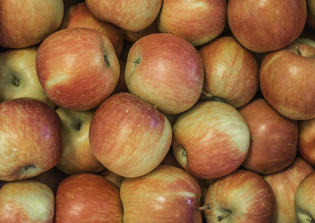 Fresh applesFuji variety grown in the apple country South Tyrol, northern Italy. Apple suitable for cakes.
