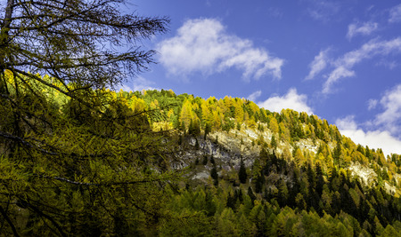 autumn landscape in Val Gardena with a trees in autumn colors. Location National Park Dolomiti, Trentino Alto Adige, province of Bolzano, Italy, Europe Imagens