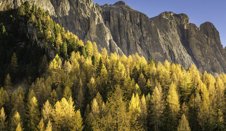 autumn landscape in Gardena Valley with a trees in autumn colors. Location National Park Dolomiti, South Tyrol, province of Bolzano, Italy, Europe Imagens