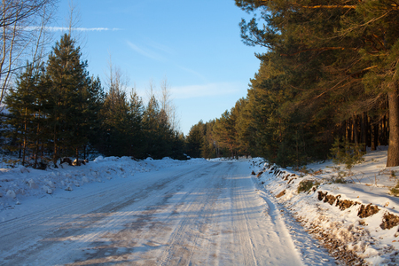 winter road in a forest of pine trees on a bright Sunny day