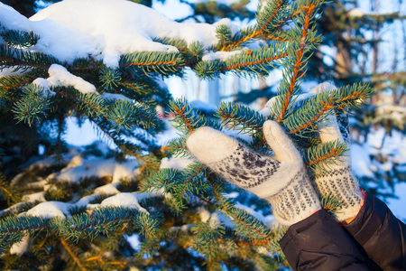 white handmade mittens on snow on blue spruce. winter