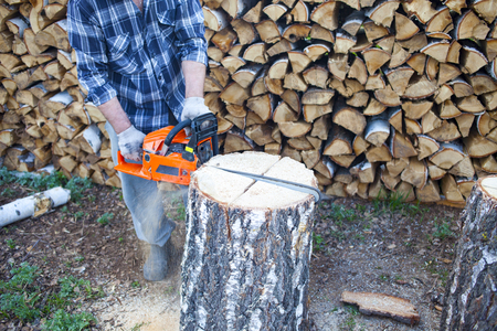 a man working a chainsaw. harvesting wood for the winter. Birch firewood. Russia Stock Photo