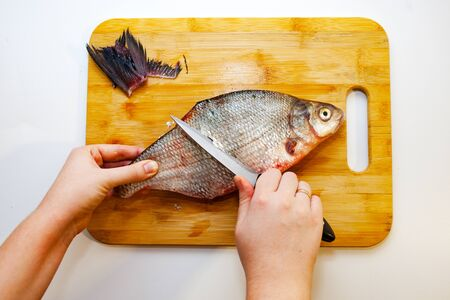 Girl cuts river fish bream. Cooking fish. White background View top.