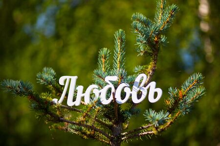 Russian language, the word Love cut out of white plastic. Park, blue spruce. Summer. Word: Family, Cyrillic.