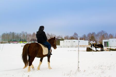 Rear view of rider on chestnut horses walking on a snow-covered road field. Russia