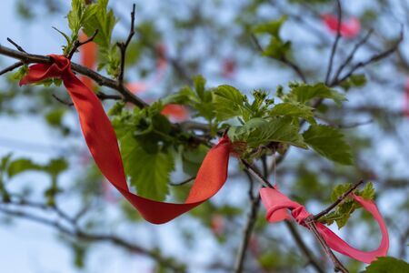 Red ribbons on the wish tree