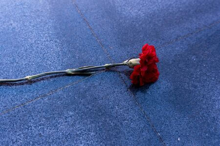 red carnation on a marble monument
