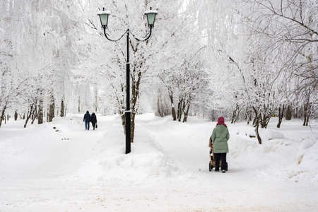 City park in winter, mom with baby carriage in the distance
