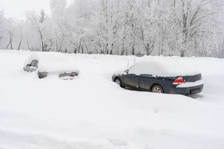 Cars on the roadside covered in snow after a snowstorm