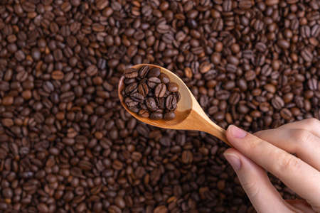Female hand holds a wooden spoon with coffee beans inside