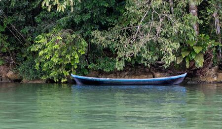 Small and simply made of a tree trunk, artisanal boat on green waters of lake, under shadow of thick green tropical vegetation.