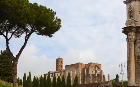 palatine: palatine ruins view in the city of rome