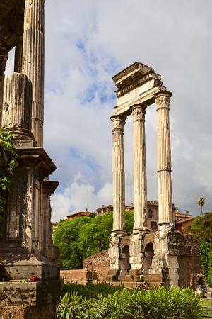 roman column: roman column view in the palatine hill
