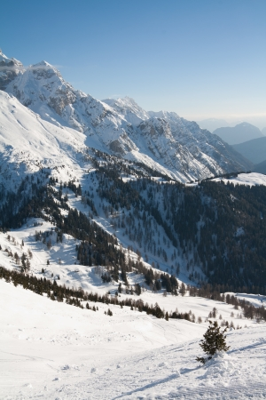 ski traces: View of Dolomite of Brenta towards Cima tosa in Italian Alps mountain with ski traces
