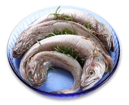 white salmon river: Fish dish with raw cod on white