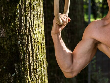 activity, adult, body, equipment, exercise, fitness, gym, gymnastics, hanging, health, healthy, muscle, nature, park, ring, sport, strength, strong, training, tree, workout  t