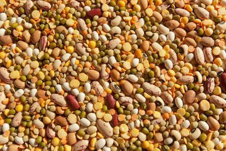 leguminosas: Las legumbres textura Foto de archivo