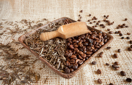 theine: dried tea leaves and roasted coffee beans: theine vs caffeine