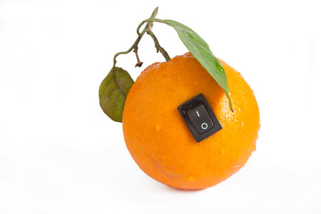 bioengineering: Single orange with switch in power off position on white background