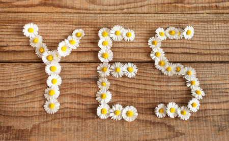 wrote: Yes wrote with daisies on wooden background Stock Photo