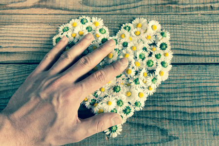 possession: Heart made of daisies flowers in wooden background, covered by an hand to represent personal feelings
