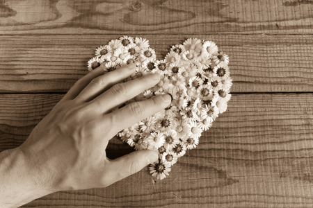 shyness: Heart made of daisies flowers in wooden background, covered by an hand to represent personal feelings