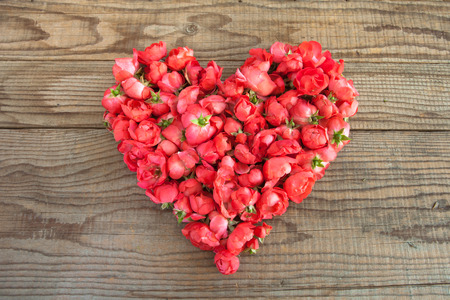 shyness: Heart made of red roses in wooden background to represent personal feelings