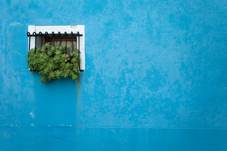 burano: small window from a blue house in Burano island, Venice