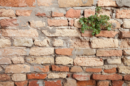 dated: detail of a dated wall in Burano island, Venice Stock Photo