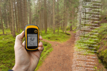 handheld device: A trekker is finding the right position in the forest via GPS in a cloudy autumnal day