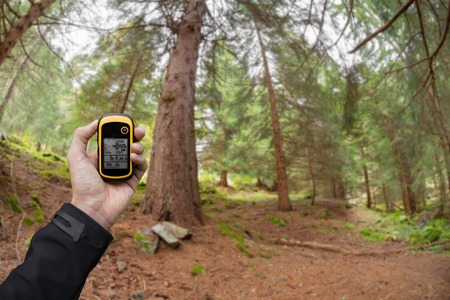 AHRNTAL, ITALY - SEPTEMBER 22, 2014: A trekker is finding the right position in the forest via gps in a cloudy autumnal day