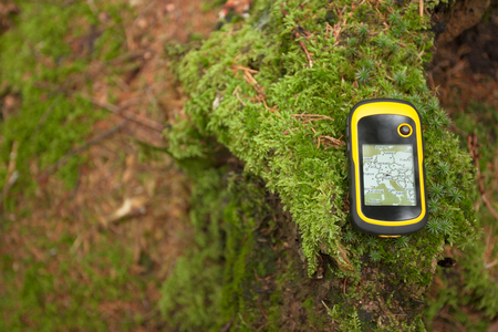 finding the right position in the forest with a gps Stock Photo