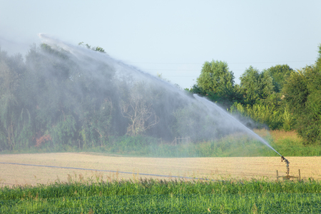 automated irrigation in agriculture in summer