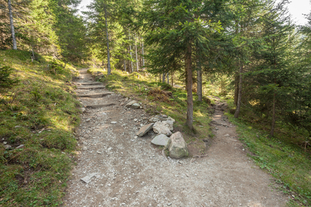 A single mountain path splits in two different directions.