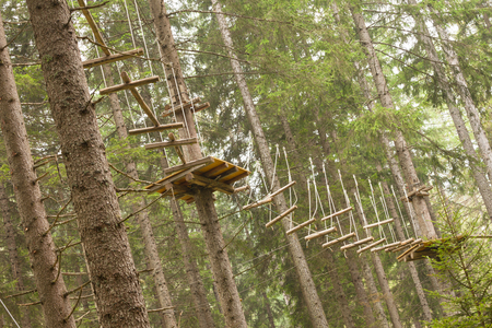 Tree climbing long an equipped route inside a n Italian woods in Dolomites, Italy. Stockfoto