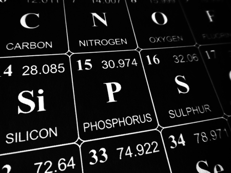 phosphorus on the periodic table of the elements