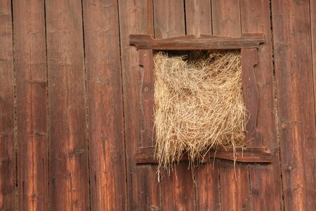 Seasonal hay from an old hayloft in Dolomites