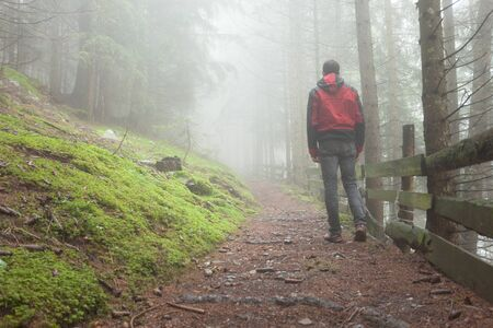 a man walking inside a forest in a foggy day