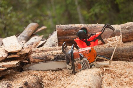 A lumberjack chainsaw and protection equipment inside an Italian forest