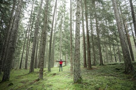 a man walking alone inside a forest in a cloudy day Standard-Bild
