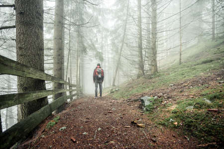 a man walking alone inside a forest in a foggy day